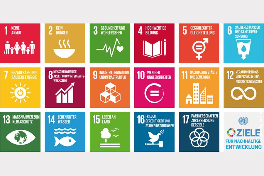 Umsetzung der internationalen Nachhaltigkeitsziele in Halle